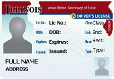 ilustrasi Illinois driver license