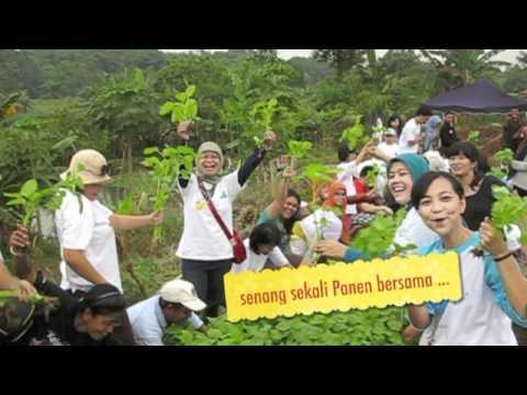 indonesia berkebun1