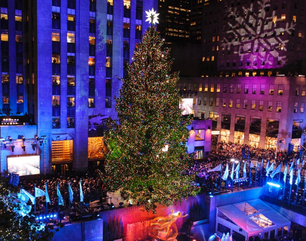 pohon natal raksasa