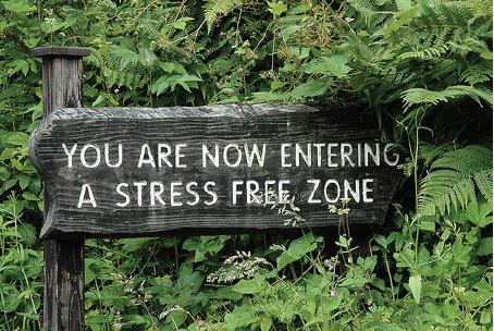 Karir Tanpa Stress