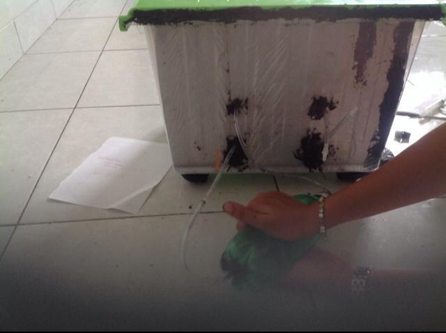 Green Refrigerant Box  (bag luar)