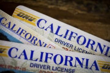 Ca driver lisence