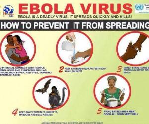 Upaya-pencegahan-penyebaran-virus-Ebola