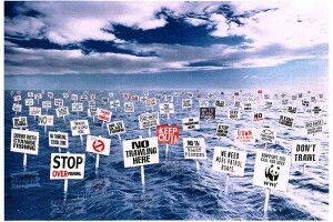 protest-against-illegal-fishing-signs-small-34621