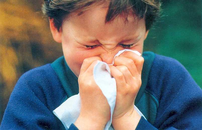 Flu menyerang anak