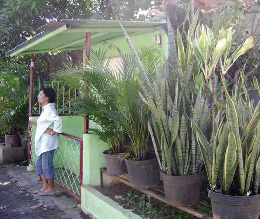 Pos Ronda Jl Banjarsari