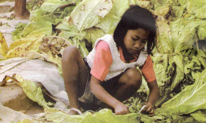 Anak Pekerja Perkebunan