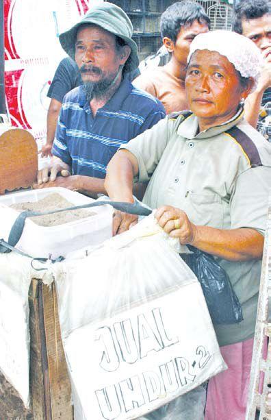 Penjual Jangkrik