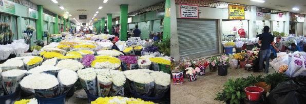 Penjual Bunga di Rawa Belong