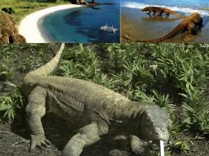 Taman Nasional Komodo yang memukau.