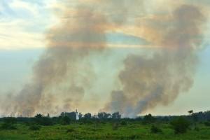 Kabut-asap-Riau-Aji-W