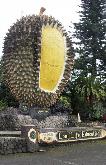 Replika Durian
