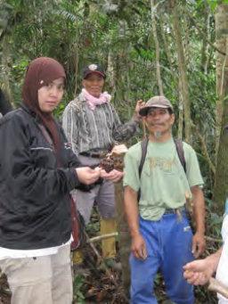 Harlinda saat Eksplotasi tanaman obat di hutan