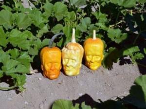 Labu Frankenstein